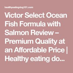 Victor Select Ocean Fish Formula with Salmon Review – Premium Quality at an Affordable Price | Healthy eating dog 101 Good Healthy Recipes, Whole Food Recipes, Dog Food Reviews, Easy Food To Make, Budget Meals, The Selection, Salmon, Healthy Eating, Ocean