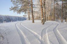 Зимний пейзаж на берегу канала имени Москвы.Россия.(фото №38)