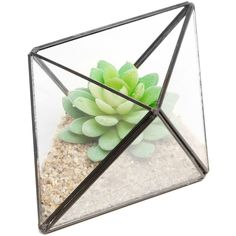 Modern Diamond Design Clear Faceted Succulent Air Plant Planter Box... ($20) ❤ liked on Polyvore featuring home, outdoors, outdoor decor, garden planter boxes, modern garden pots, patio planter box, succulent pots and garden bowl