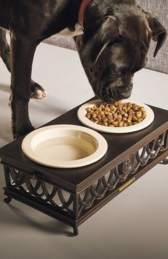 Accented with elegant French icons, this substantial Fleur-de-Lis Elevated Pet Feeder elevates your dog's food to a position that reduces neck strain and aids in digestion.