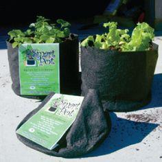 Vegetable Bags   Grow Pots - Urban Farmer