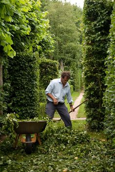Monty Don in his garden at Longmeadow.