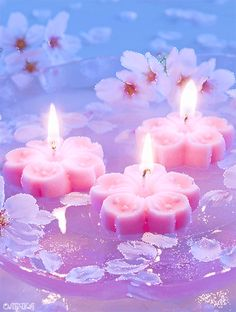 Pretty in Pink Lit Candles Candle Lanterns, Pillar Candles, Floating Candles, Tea Light Candles, Bougie Rose, Couleur Rose Pastel, Bougie Candle, Candle In The Wind, Pink Candles