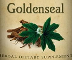 GOLDENSEAL Root & Leaf Natural Tincture Herbal Extract Traditional Immune System