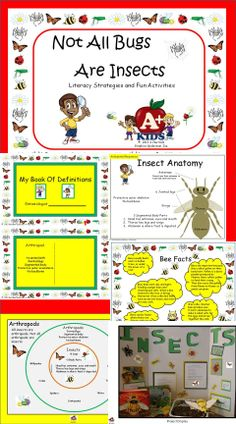 $ Your students will learn many interesting facts about insects and spiders while engaging in strategies to extract information from charts and diagrams provided in this mini-unit.