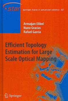 Efficient Topology Estimation for Scale Optical Mapping (Hardcover)