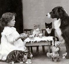 The tea party by Maria da Graça Rodrigues