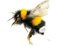 Biene-Aquarell - Bumble Bee-Kunstdruck. Natur-Illustration. Honigbiene, fliegende Biene, schöne Biene Kunst