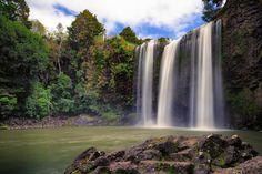 Whangarei Falls NZ by David Buhler on 500px