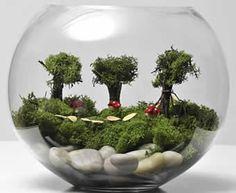 http://www.makeandcraft.com/terrarium-make-your-own-terrarium/ terrarium, make your own terrarium, artificial terrarium, easy gardening, make and craft magazine