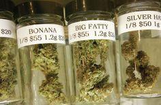 Cannabis terapeutica anche per i bambini? In Arizona un caso interessante