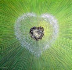 Heart by French artist painter Pierre Marcel.fabulous style