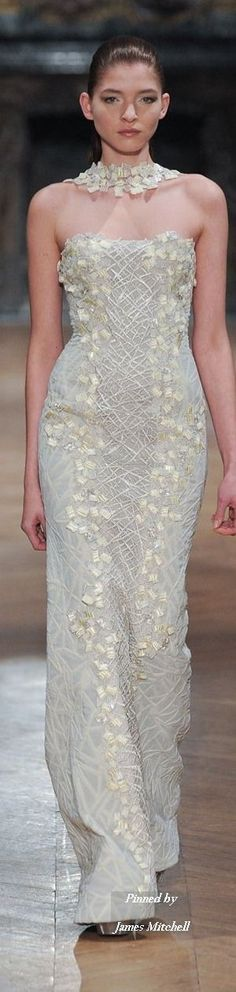 Tony Ward Haute Couture Collection Spring Summer 2014 Paris