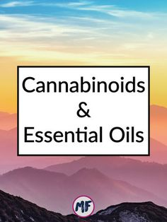 Cannabinoids and Essential Oils