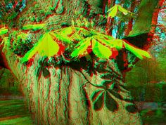 **3-D Glasses  needed to see picture properly...  anaglyph. 3-D Art. 3d effect nature - Поиск в Google