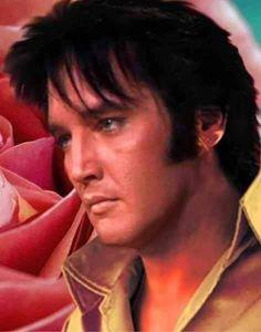 Elvis die blik, ik zou weleens willen weten wat er zoal omging in zijn gedachten, ik zie nog al eens foto,s met die blik ...............lbxxx.