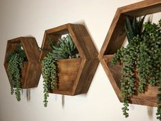 This listing is for a set of three succulent + hexagon shelves. This succulent hexagon shelf comes as pictured above with the succu… Geometric Shelves, Honeycomb Shelves, Hexagon Shelves, House Plants Decor, Plant Decor, Plant Wall, Pallet Shelves, Wood Shelves, Office Deco