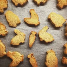 Keep it Simple, Keep it PALEO: Biscoitos de côco
