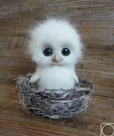 Cute Animals Hd only Domestic Animals Cute Pictures + Cute Baby Animals Live Wallpaper Needle Felted Animals, Felt Animals, Needle Felting, Animals And Pets, Baby Animals Pictures, Cute Animal Pictures, Felt Pictures, Bird Pictures, Funny Pictures