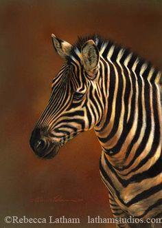 Zebra Study by Rebecca Latham