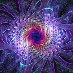 Patterns  spirals