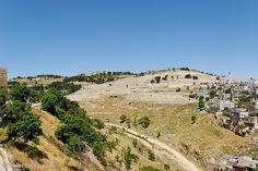 Mt of Olives where Yeshua (Jesus') feet will touch down on when He returns.  He prayed here often. When I'm in Israel in May 2014, I get one free day. I long to sit here in a secluded spot and spend the afternoon with Him there....just thinking of this brings me to tears.