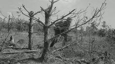 Taistelulähetti Ihantalassa heinäkuussa 1944. Finland, Wwii, Battle, Photographs, Painting, Art, Soldiers, Art Background, World War Ii