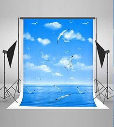 5x7ft Blue Sea Backgrounds Blue Sky White Cloud Seagulls Photo Backdrops Nature Scenery Backdrop
