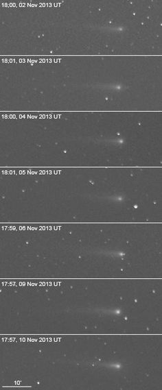 2013 Nov: A montage showing the development of the coma and tail of C/ISON, all images taken under similar conditions by astroimager, R. Kaufman.