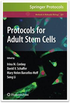 Methods in Molecular Biology Vol.621 - Protocols for Adult Stem Cells, 207 Pages | Sách Việt Nam