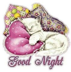 A cute good night ecard. Free online Good Night Cat ecards on Everyday Cards Good Night Quotes, Good Night Cat, Good Night My Friend, Good Night Everyone, Cute Good Night, Good Night Messages, Good Night Sweet Dreams, Day For Night, Good Night Greetings