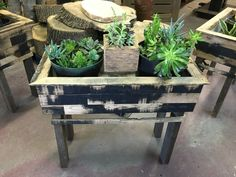 Undeniable Quality in Sustainable Material Succulent Boxes, Succulents, Sustainability, Hardwood, Herbs, Table, Furniture, Home Decor, Natural Wood