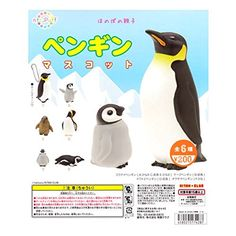 Ntc.puff Penguin Mascot Set Of 6 Capsule Toys Gashapon From Japan