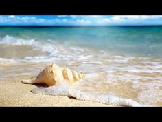 Abraham hicks - training yourself into positive expectation beach wallpaper, beach pictures wallpaper, summer Beach Pictures Wallpaper, Beach Wallpaper, Hd Wallpaper, Wallpaper Maker, Summer Wallpaper, Computer Wallpaper, Wallpaper Ideas, Nature Wallpaper, Strand Wallpaper