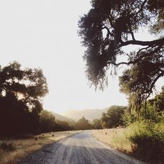 Lets be adventurers, and just go. <3