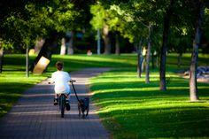 Henderson Park, Golf, Outdoor Furniture, Outdoor Decor, Wanderlust, Club, Yard Furniture