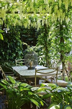 A small backyard garden relaxing outdoor dining room under a pergola Small Garden Design, Small Space Gardening, Garden Spaces, Small City Garden, Garden Design Ideas, Garden Landscape Design, Colorful Garden, Wisteria Pergola, Wisteria Plant
