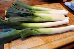How to plant and grow leeks. Wish I'd known this at the beginning of the season!