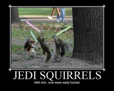 motivational pictures humor | Jedi Squirrels Demotivational Poster
