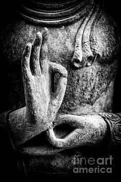 Buddha Canvas Art - Buddha Hand Mudra by Tim Gainey Buddha Wall Art, Buddha Painting, Buddha Zen, Gautama Buddha, Buddha Artwork, Black Buddha, Buddha Canvas, Buddha Garden, Buddha Decor