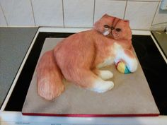by brothers girlfriends birthday cake, a copy of her persian cat
