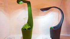 Lámpara flexo LED permite poner una planta en su base, diseñado por Deger Cengiz