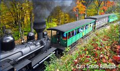 I really want to go to Cass Railroad.  Anyone wanna go with? =P