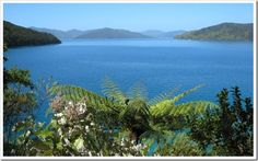 More of Marlborough Sound