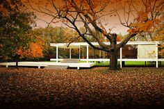 Ludwig Mies van der Rohe : Farnsworth House, near Plano, Illinois. Farnsworth House, Ludwig Mies Van Der Rohe, Architecture Classique, Classic Architecture, Interior Architecture, Minimalist Architecture, Villa Tugendhat, Glass House Design, Glass Pavilion