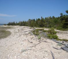 Lake Michigan Islands Management Plan now available for review