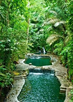 46 pool landscaping ideas tropical small backyards 7 ~ vidur net is part of Garden pond design - 46 pool landscaping ideas tropical small backyards 7 Related Garden Pond Design, Landscape Design, Garden Ponds, Landscape Plans, Natural Swimming Ponds, Swimming Pools, Dream Pools, Garden Care, Backyard Landscaping