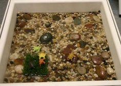 Pegar os peixinhos emborrachados dentro da água com a peneira   Pegar clips dentro da vasilha de arroz com uma varinha de imã   Pegar as t...