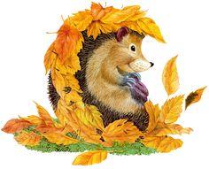 рисунок осень: 21 тыс изображений найдено в Яндекс.Картинках