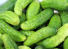 Top 5 Fantastic Benefits of Cucumber - Health Sabz Cucumber Benefits, Fruit Benefits, Healthy Nutrition, Healthy Life, Healthy Living, Muscle Nutrition, Diet Supplements, Nutritional Supplements, Zero Calorie Foods